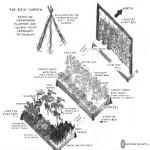 A Basic Vegetable Garden