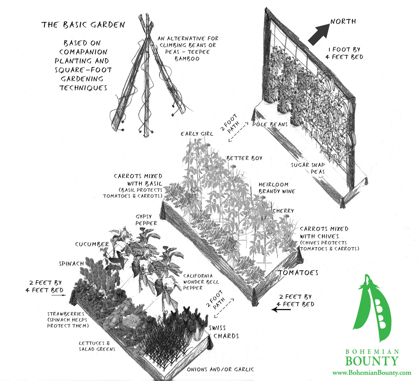 Garden designs gallery bohemian bounty for How to layout plants in a garden