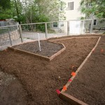 The completed beds. The darker black and white soil on the left is the Mel's mix bed.