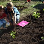 Audra gets some help planting giant sunflowers.