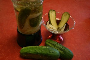 Dill-iscous Refrigerator Pickles