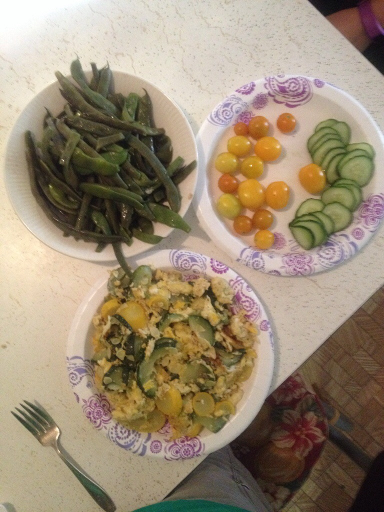 We had sauteed fresh squash and eggs, green beans, and tomatoes and cucumber drizzled in olive oil and sea salt. Other than the oil and salt we produced it all. Yum!